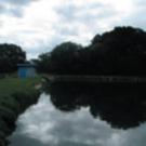 pond_treatment